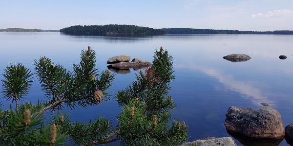 Landscape to Lake Saimaa from the Lammassaari island