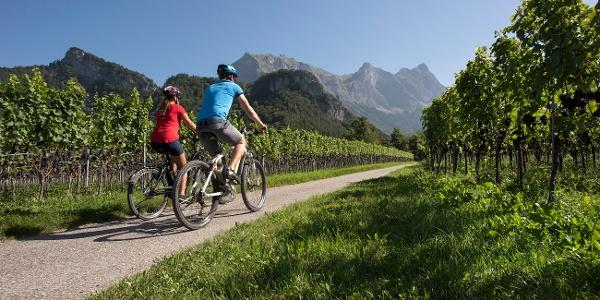 E-Bike Tour durch die Bündner Herrschaft