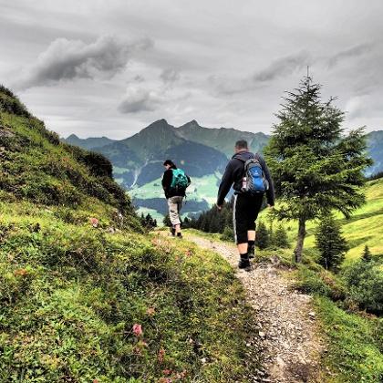 Wanderweg Alpe Oberpartnom - Alpe Steris