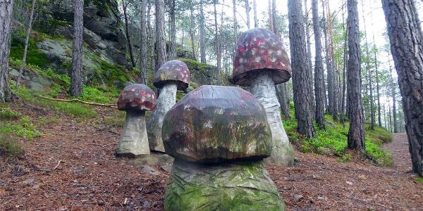 Mushroom path
