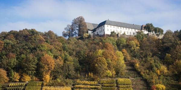 Etappe 5 von Klingenberg nach Großheubach