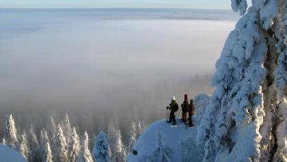 Schneeschuhtour entlang der Koli-Berge