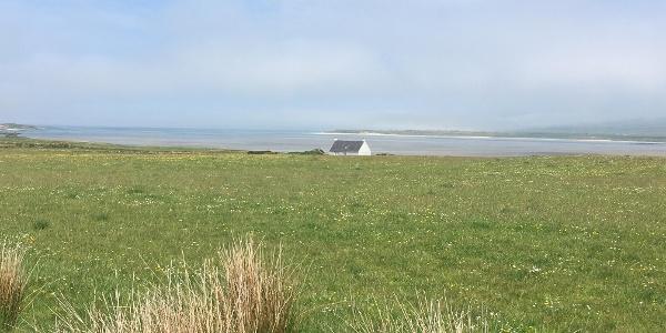 The fields beside Loch Gruinart
