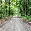 Forstautobahn