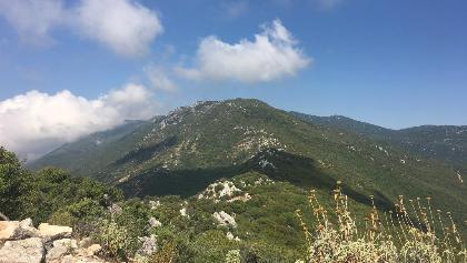 View of the ridge