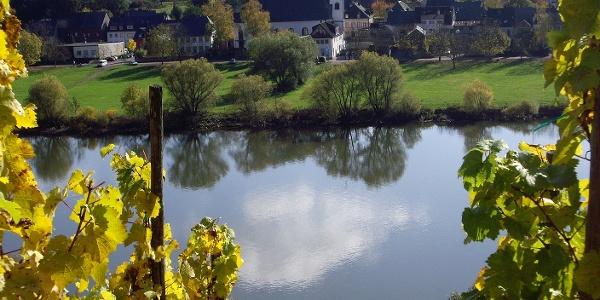 Blick auf die Mosel und die Simultankirche Brauneberg