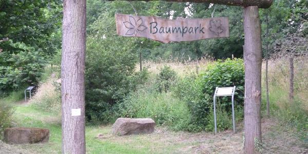 Baumpfad bei Rüdershausen