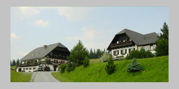 Außenansicht Alpengasthaus Hoiswirt