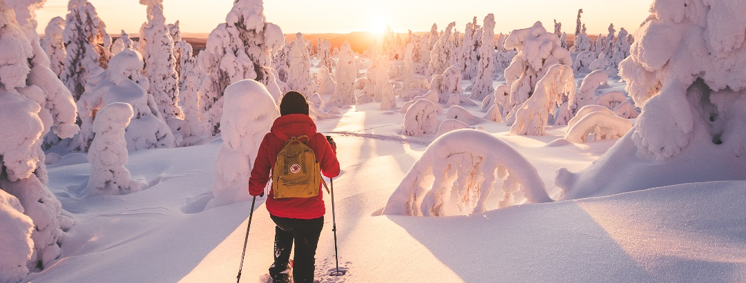 Snowshoeing trails in Ylläs