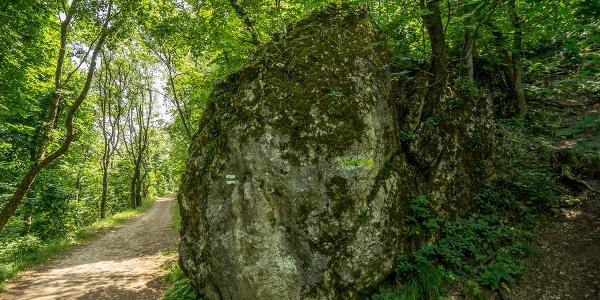 Der Block des Guckler Felses