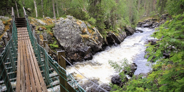 Taivalköngäs hanging bridge in Oulanka National Park