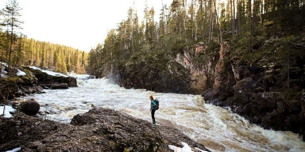 Kiutaköngäs Falls along Karhunkierros Trail, Oulanka National Park