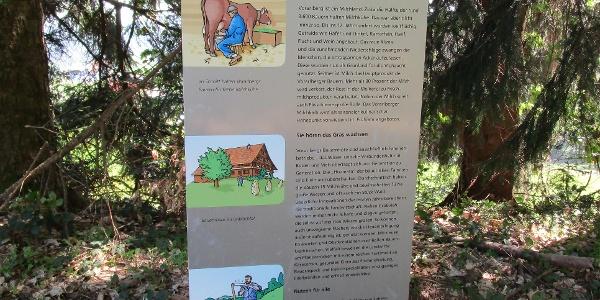 Immer wieder informieren Infotafeln über den bekannten Vorarlberger Käse
