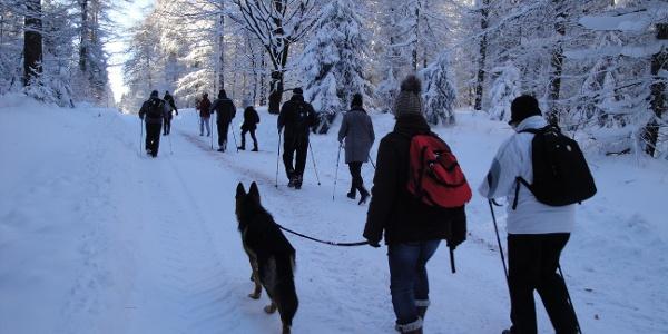 Winterwandern auf dem Kammweg