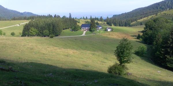 Hofalm