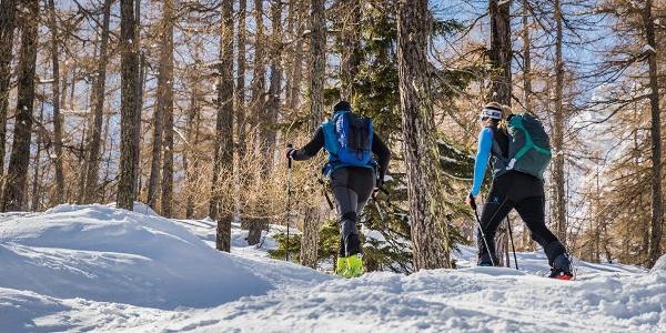 Aufstieg durch den Wald ins Waztzmannkar