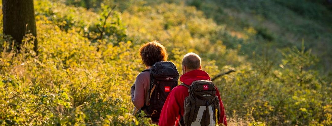 Zwei Wanderer mit Rucksack in der Abendsonne am Rothaarsteig