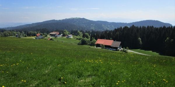 Blick über die Parzelle Hub auf den Hirschberg