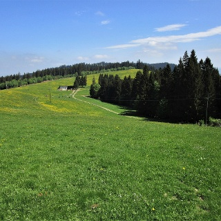 Gemütlich führt der Weg über den sanften Höhenrücken zum Fürnberg