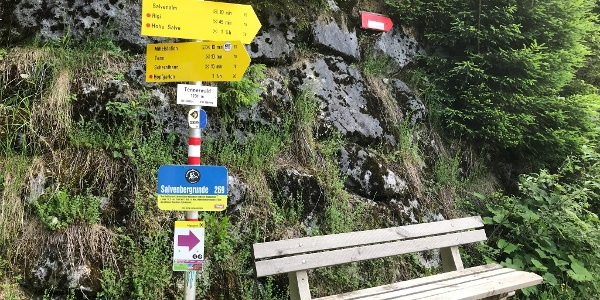 The trail is very well way-marked