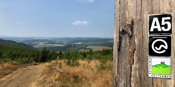 Der Keltenweg führt hinauf zur Alten Burg, einer frühen Ringwallanlage, die noch zu erkennen ist. Eine Bebauung der etwa 2500 Jahre alten Bergkuppe konnte aber nie nachgewiesen werden.