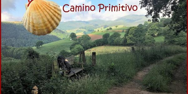 Camino Primitivo - Der ursprüngliche Jakobsweg / Camiño Primitivo de Santiago / The Way of St.James