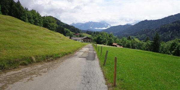 Weg zwischen Pfeifferalm und Gschwandtnerbauer