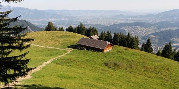 Barzoraalpe: Blick aufs Alpenkreuz und das Rheintal.