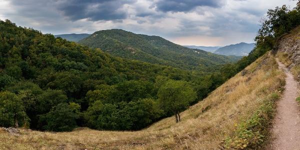 Panorama von dem Spartacus-Jagdpfad in Richtung der Donau