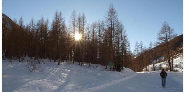 Winterwanderweg Blatten - Kühmatt