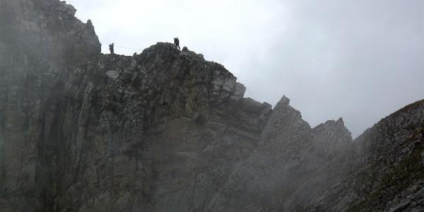 Klettersteig Graustock.