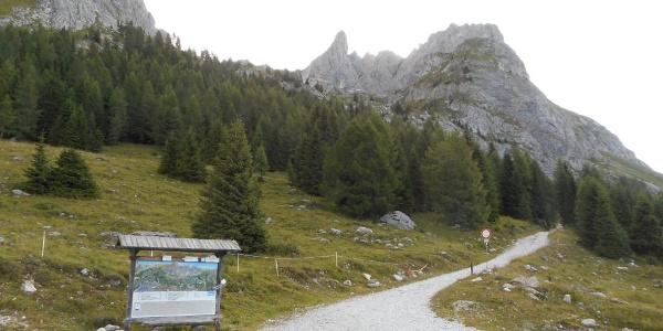 La strada che sale al rifugio P.F. Calvi