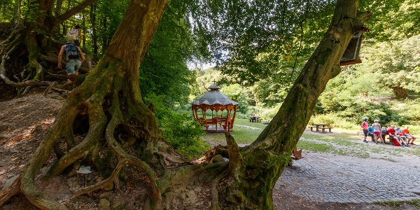 Pihenőhely a Szentfa.kápolnánál