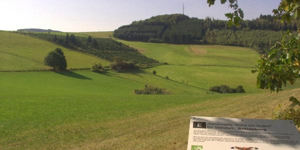 Blick zum Bilsenberg