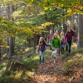 Rundweg zum Hambacher Schloss - Hohe Loog