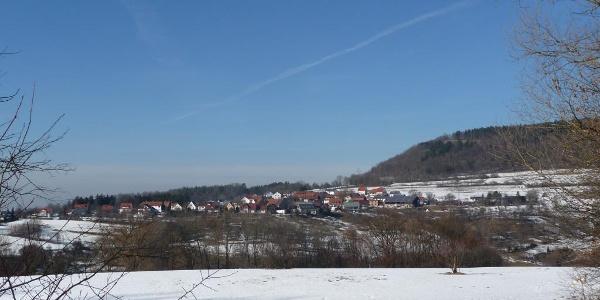 Blick auf Langenau