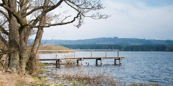 Jungferweiher Ulmen_Vulkaneifel-Pfad: Maare-und-Thermen-Pfad: Etappe 1: Ulmen - Lutzerath