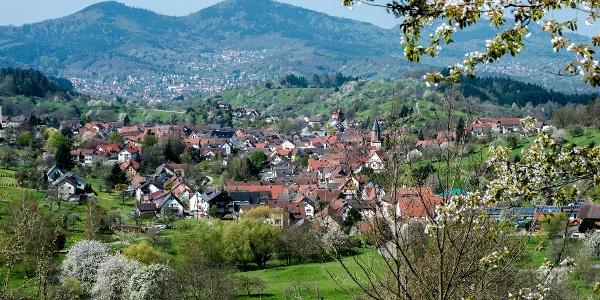 Loffenau Panoramarunde
