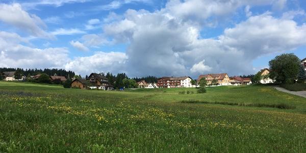 Besenfeld