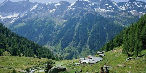 Tellialp - Lötschentaler Höhenweg