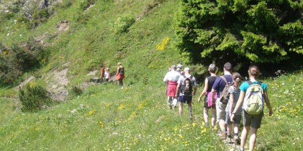Lungo il sentiero tra Caset e Bocca di Val Marza