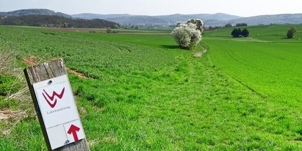 Durch Wiesen und Felder