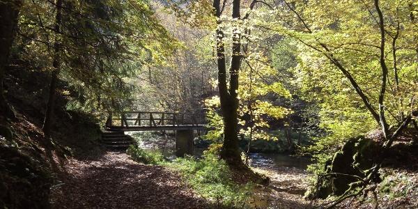 Brücke über die Lieser_Vulkaneifel-Pfade: Manderscheider Burgenstieg