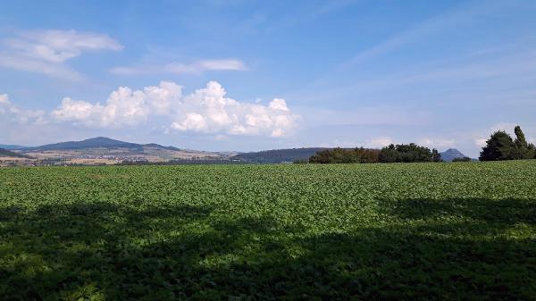 Blick auf die Hegauberge