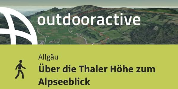 Wanderung im Allgäu: Über die Thaler Höhe zum Alpseeblick