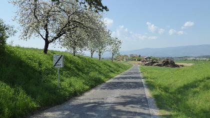 Hariweg Richtung Mannsberger Kapelle