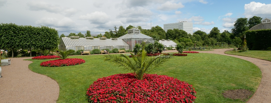 Trädgårdsföreningen Park