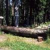 Brunnen bei der Täfeletanne