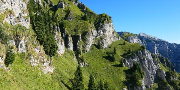 Bel tratto di bancata erbosa nella seconda parte del Cordín delle Vette.