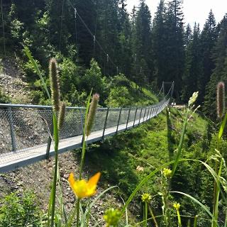 Imposant schwingt sich die Brücke 70 Meter weit über das Tobel.